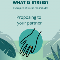 Stress is proposing to your partner