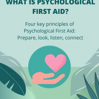 4 principles of psychological first aid