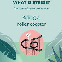 Stress is riding a roller coaster