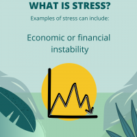 Stress is economic or financial instability