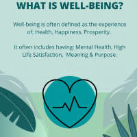 What is well being?